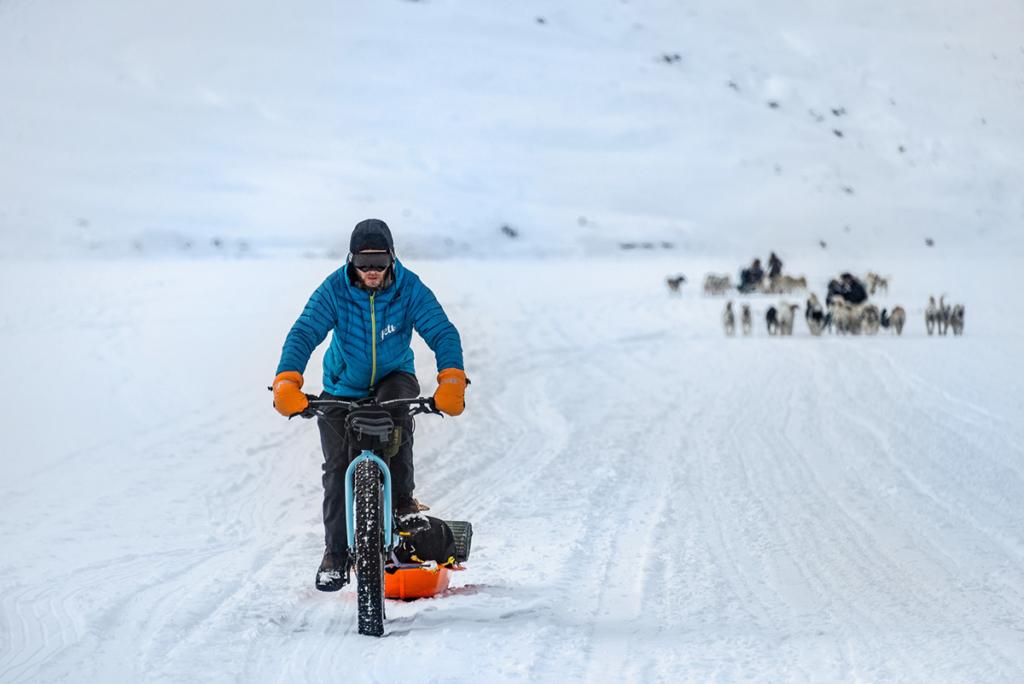 Psie zaprzęgi na drodze na Grenlandii