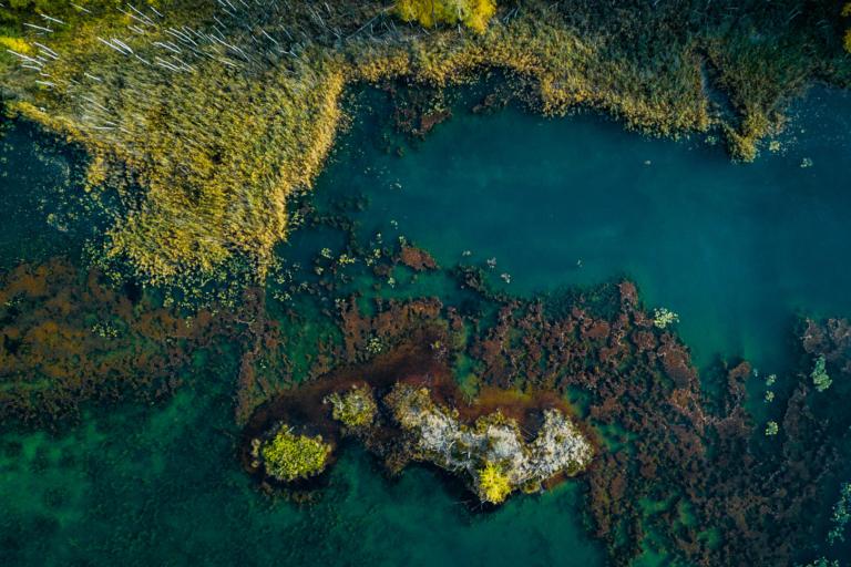 KOlorowe Jeziorka park mużakowski