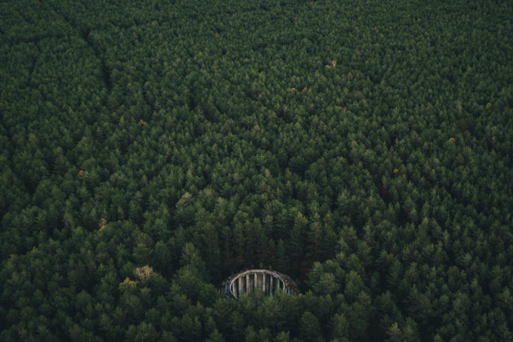 Kombinat DAG Nobel Krzystkowice opuszczony silos w lesie