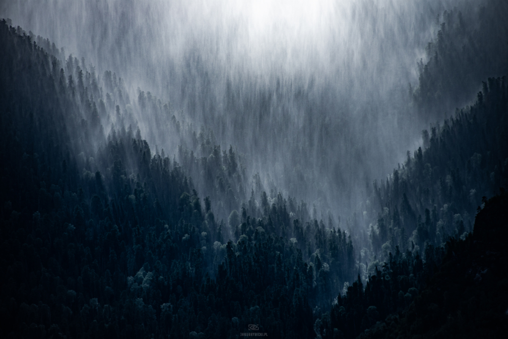 widok lasu ałtajskiego podczas burzy